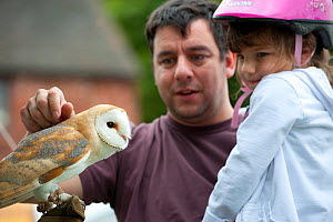Man and child looking at Barn Owl at the Black Country Living Wildlife Roadshow, Sandwell Park Farm, West Bromwich, West Midlands, August 2011.  Did you know? Although owls have excellent night vision...  -  Paul Harris / 2020VISION