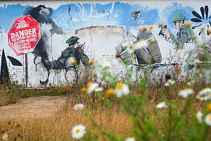 Graffiti on wall at Rainham Marshes RSPB Reserve, reflecting its past as a military firing range, Essex, England, UK, November. Did you know? These marshes are one of the oldest natural areas in Londo...  -  Paul Harris / 2020VISION
