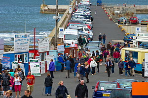Tourists at boat tour trip huts in Seahouses Harbour, Northumberland, July 2011.  -  Rob Jordan / 2020VISION
