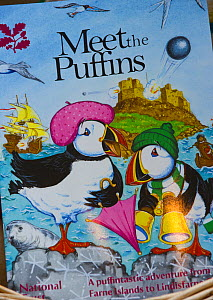 Puffin (Fratercula arctica) souvenirs for sale in National Trust shop in Seahouses, Northumberland, August 2011.  -  Rob Jordan / 2020VISION