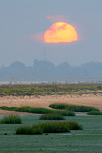 Sunset over South Swale local nature reserve, Kent, England, UK, November. - Terry Whittaker / 2020VISION