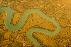 Water channels making patterns in saltmarsh, seen from the air. Abbotts Hall Farm, Essex, UK, April 2012.  -  Terry Whittaker / 2020VISION