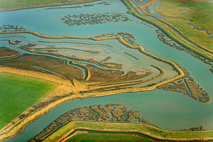 Remnant saltmarsh and coastal realignment at Abbotts Hall Farm, Essex, UK, March 2012. Did you know? 24% of the English coastline is saltmarsh. - Terry Whittaker / 2020VISION