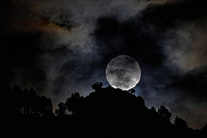 The 'Perigree Super-moon'. A supermoon is the coincidence of a full moon with the closest approach the Moon makes to the Earth on its elliptical orbitis resulting in it appearing up to 14% larger and...  -  Ben Lascelles