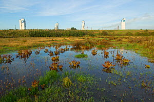 Wetlands with industrial towers in the distance, Grande-Synthe, Dunkirk, France, September 2010  -  Wild Wonders of Europe / Préau