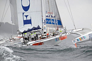 'Foncia' skippered by Michel Desjoyeaux arriving in Brest following transatlantic crossing from New York, during the Krys Ocean Race, France, July 2012. All non-editorial uses must be cleared individu...  -  Benoit Stichelbaut