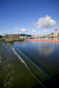 Tidal Barrage generating electricity from tidal river but modifying the flow of important salmon and sea trout river, Swansea, Wales, UK 2009 - David Woodfall
