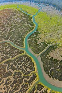 Aerial view river tributaries and saltmarshes of Bahia de Cadiz Natural Park, Huelva, Andalucia, Spain, March 2008 - Juan Carlos Munoz