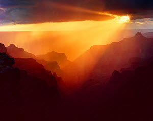 North Rim at Cape Royal with sunset storm light streaming in rays, backlighting the canyon ridges, Grand Canyon National Park, Arizona, USA  -  Jack Dykinga