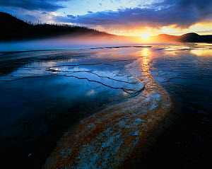 Rivers of red algae across bacterial mats, at sunset, Grand Prismatic Geyser, Yellowstone National Park, Wyoming, USA  -  Jack Dykinga