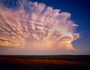 Cheyenne River Sioux Tribal Park with severe storm clouds at sunset amid vast grassland, South Dakota, USA  -  Jack Dykinga