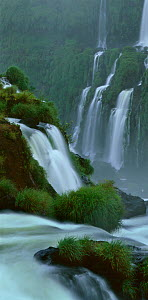 Iguazu Falls, World Heritage Site and National Park from the Brazil side of the falls, South America  -  Jack Dykinga