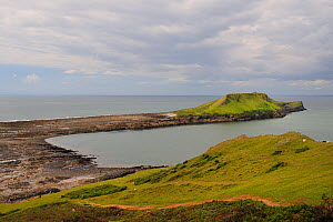 Overview of the Worm's head with causeway connecting it to the mainland exposed at low tide, with wave cut platform and rockpools visible, Rhossili, The Gower peninsula, Wales, UK, July. Sequence 1 of...  -  Nick Upton