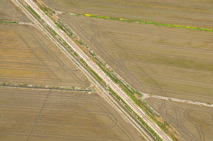 Aerial view of old railway line crossing dry rice fields, Camargue, Southern France, May 2009  -  Jean E. Roche