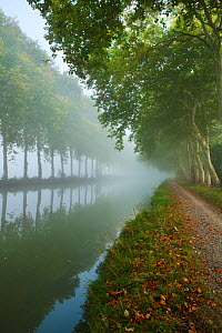 The Canal du Midi near Castelnaudary, Languedoc-Rousillon, France. September 2011. - David Noton