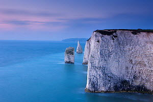 The white cliffs at Studland, Isle of Purbeck, Jurassic Coast, Dorset, England, UK. November 2011 - David Noton