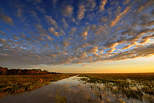 Sunrise over wetlands of Bamarru Plains, North West Territories, Australia, May 2009  -  Andy Rouse