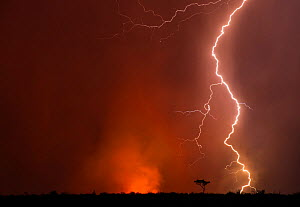 Storm over the Central Kalahari Game Reserve, lightning sstrikes are the predominant cause of bush fires, Botswana, November - Roy Mangersnes