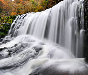 Sgwd Isaf Clun-gwyn waterfall. Ystradfellte, Brecon Beacons National Park, Wales, November 2011.  -  Andy Rouse / 2020VISION