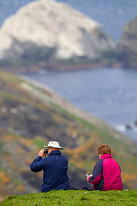 People watching Gannet (Sula bassana) colony. Hermaness National Nature Reserve, Shetland, Scotland.  -  Peter Cairns / 2020VISION