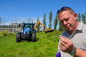 Slow worm (Anguis fragilis) being removed from brownfield site scheduled for development as part of mitigation project by Ecologist Brett Lewis, with tractor in background. Kent, UK, June 2012.  -  Terry Whittaker / 2020VISION