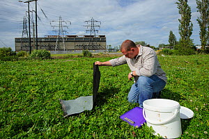 Ecologist Brett Lewis checking refugia as part of reptile mitigation project on brownfield site scheduled for development. Kent, UK, June 2012.  -  Terry Whittaker / 2020VISION