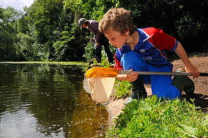 Boy inspects his net after pond-dipping as his mother peers into the water during Abbots Pool and woodland reserve Bioblitz, Bristol, UK, June 2012. Model released.  -  Nick Upton / 2020VISION