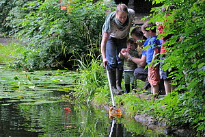 Family pond dipping and inspecting the catch during Abbots Pool and woodland reserve Bioblitz, Bristol, UK, Junen2012  -  Nick Upton / 2020VISION