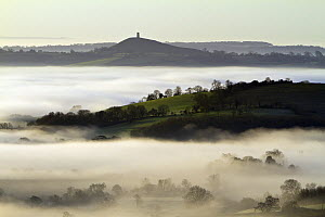 Early morning mist covers the low lying Vale of Avalon with Glastonbury Tor in distance. Somerset, UK, January 2012 - John Waters