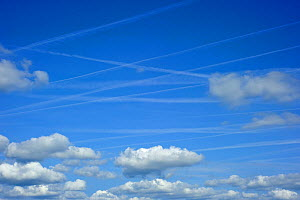 Vapour trails from aircrafts among clouds in a blue sky, France  -  Philippe Clement