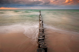 Line of Wooden posts running into the Baltic Sea at dusk, National ParkVorpommersche Boddenlandschaft, Germany, May  -  Sandra Bartocha