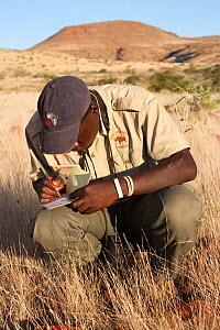 Save the Rhino Trust tracker Dansiekie Ganaseb, recording black rhino sighting, Palmwag concession, Kunene region, Namibia, May 2009. Editorial use only - Ann & Steve Toon