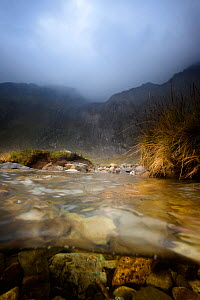 A split level image of a small mountain stream. Cwm Idwal, Snowdonia, Wales, September 2011.  -  Graham Eaton