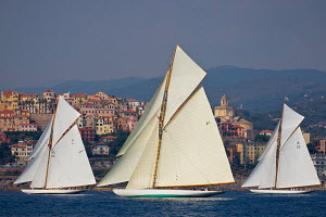 'Hispania', 'Mariska' and 'The Lady Anne' during the Vele D'Epoca di Imperia as part of the Panerai Classic Yacht Challenge, Italy, September 2012. For editorial use only. - Sea & See