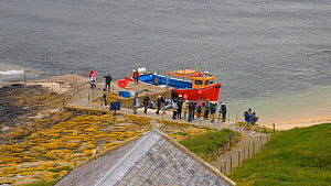 Timelapse of tourists arriving on the Farne Islands by boat, Northumberland, England, UK, July 2011  -  Rob  Jordan / 2020VISION