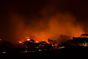 Bush fire at night near Mooi River, KwaZulu-Natal, South Africa, October 2006 - Kerstin Hinze