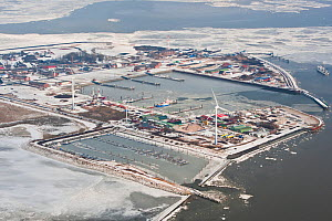Aerial view of frozen harbour of Borkum in winter with ice sheets and snow, East Frisia, North Sea, Lower Saxony, Germany February 2012  -  Kerstin Hinze
