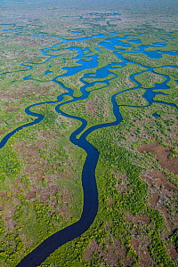 Aerial view over subtropical mangrove wetlands of the Everglades National Park. Florida, USA, February 2012.  -  Juan Carlos Munoz