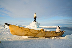 Inupiaq subsistence whalers with an umiak - a bearded seal skin boat - wait at the edge of an open lead in the pack ice and look for whales. Chukchi Sea, offshore from Barrow, Arctic coast of Alaska,...  -  Steven Kazlowski