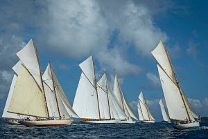 Fleet including 'Moonbeam IV', 'Sunshine', 'Moonbeam of Fife', 'Cambria' and 'Elena' at the start line during the Cannes Royal Regatta as part of the Panerai Classic Yacht Challenge, Italy, September... - Sea & See