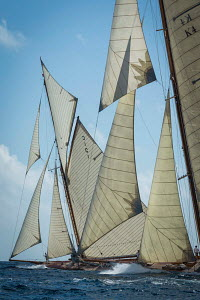 Classic cutters 'Mariquita' and 'Cambria' racing during the Cannes Royal Regatta as part of the Panerai Classic Yacht Challenge, Italy, September 2012. For editorial use only. - Sea & See