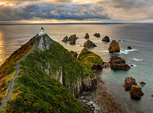 RF- Nugget Point (Ka Tokata) lighthouse at sunrise, rain clouds sweeping in from the horizon. Catlins, Clutha District, Otago, South Island, New Zealand. October, 2006. (This image may be licensed eit... - Andy Trowbridge