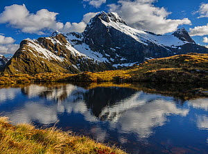 Early morning light on MacKinnon Pass, the highest point of the Milford track. Mount Elliot (1928m) and Mount Wilmur (right) being reflected in an alpine tarn, Milford Track, Fiordland National Park,...  -  Andy Trowbridge