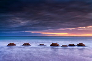 RF- Moeraki Boulder / Kaihinaki on Koekohe Beach at sunrise. 60 Million year old mudstone concretions. Moeraki, Waitaki District, Otago Region, South Island, New Zealand. January, 2012. (This image ma...  -  Andy Trowbridge