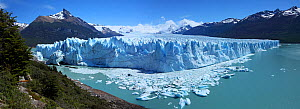 Perito Moreno Glacier, panoramic view, Argentina, January 2010 - Mark Taylor