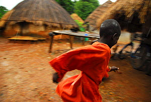 A boy runs in the rain in a Bassari village. Bassari country, east Senegal. This area became a UNESCO World Heritage site in 2012, for cultural landscape and traditions kept by the the Bassari, Fula a...  -  Enrique Lopez-Tapia