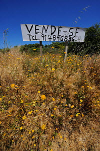 For sale  sign in Douro region, land abandonment,  rewilding project, Portugal, May 2011  -  Wild Wonders of Europe / Widstrand