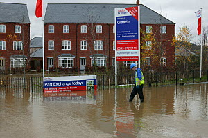 Flooding of newly built housing in the Glasdir estate with houses for sale, Ruthin, the Vale of Clwyd, Denbighshire, Wales, UK.  This is an area at risk of flooding and therefore difficult to obtain H...  -  David Woodfall