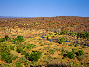Olifants River running through veldt landscape, seen from Olifants Camp, Kruger National Park, Transvaal, South Africa, September.  -  Oriol Alamany