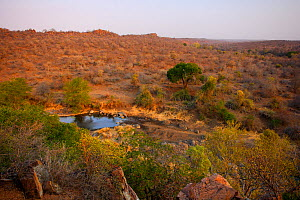 Landscape view of a waterhole, Sweni, Kruger National Park, Transvaal, South Africa, September.  -  Oriol Alamany